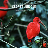 Play & Download Relax With ... Secret Jungle by Azzurra Music | Napster