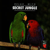 Play & Download Relax With...Secret Jungle (Enhanced With Music) by Azzurra Music | Napster