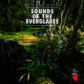 Play & Download Relax With...Sound Of The Everglades by Azzurra Music | Napster
