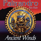 Play & Download PALISANDRO - Ancient Winds by Various Artists | Napster
