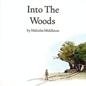 Play & Download Into The Woods by Malcolm Middleton | Napster