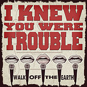 I Knew You Were Trouble by Walk off the Earth