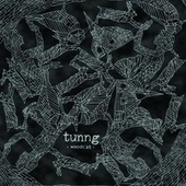 Play & Download Woodcat by Tunng | Napster