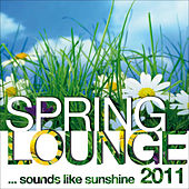 Spring Lounge 2011 (sounds Like Sunshine) by Various Artists