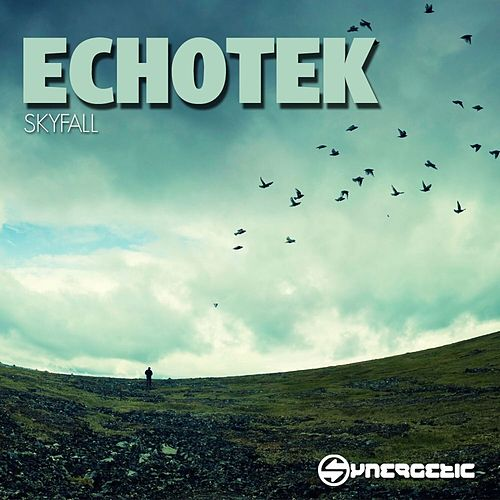 Play & Download Skyfall - Single by Echotek | Napster
