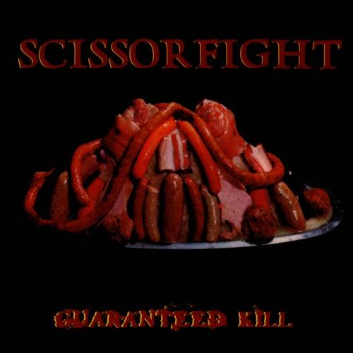 Guaranteed Kill by Scissorfight