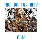 Play & Download New Winter Hits 2013 by Various Artists | Napster