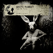 Play & Download Fool Me Twice by White Rabbit | Napster