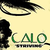 Play & Download Striving by Calo | Napster