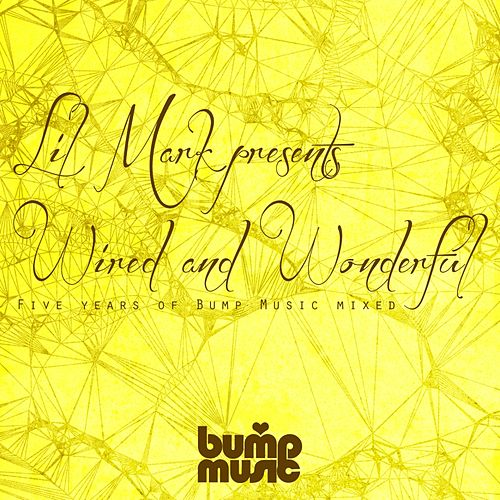 Play & Download Lil Mark Presents Wired & Wonderful 5 Years of Bump Music - EP by Various Artists | Napster