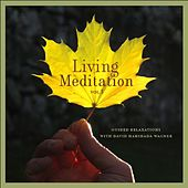 Living Meditation Vol. 3: Guided Relaxations With David Harshada Wagner by Music For Meditation