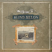 The Best Of Blind Melon by Blind Melon
