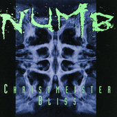 Play & Download Christmeister by Numb | Napster