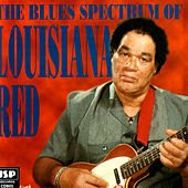 Play & Download The Blues Spectrum Of Louisiana Red by Louisiana Red | Napster