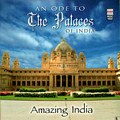 Play & Download Amazing India - An Ode To The Palaces Of India by Taufiq Qureshi | Napster