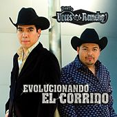 Play & Download Evolucionando El Corrido by Dueto Voces Del Rancho | Napster