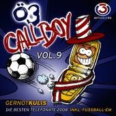 Ö3 Callboy Vol. 9 von Gernot Kulis