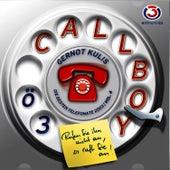 Ö3 Callboy Vol. 4 von Gernot Kulis