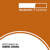 Play & Download Treibstoff Artist Bundle - Gabriel Ananda by Gabriel Ananda | Napster