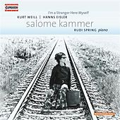 Play & Download I'm a Stranger Here Myself by Salome Kammer | Napster