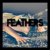 Play & Download Land of the Innocent by Feathers | Napster