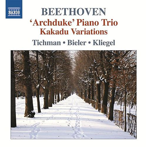 Play & Download Beethoven: Piano Trios, Vol. 5 by Xyrion Trio | Napster