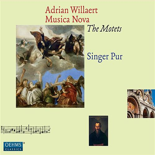 Play & Download Willaert: Musica Nova - The Motets by Singer Pur | Napster