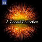 A Choral Collection von Various Artists