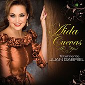 Play & Download Totalmente Juan Gabriel by Aida Cuevas | Napster