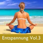 Play & Download Entspannung Vol. 3 by Claudia Von Lienen | Napster