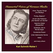 Play & Download Karl Schmitt-Walter, Vol. 1: Opera, Operetta and Song by Karl Schmitt-Walter | Napster