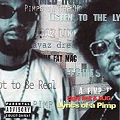 Lyrics of a Pimp (Classic Remastered Version 2013) von 8Ball and MJG