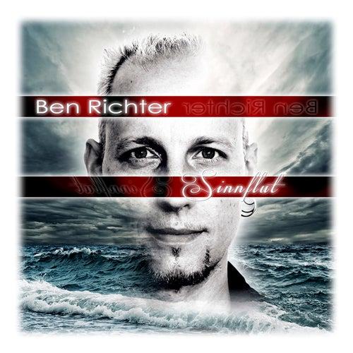 Sinnflut by Ben Richter