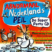 Play & Download Abnormaal Nederlands Peil by Divers | Napster