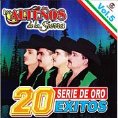 20 Exitos Series De Oro Vol.5 by Los Altenos De La Sierra (1)