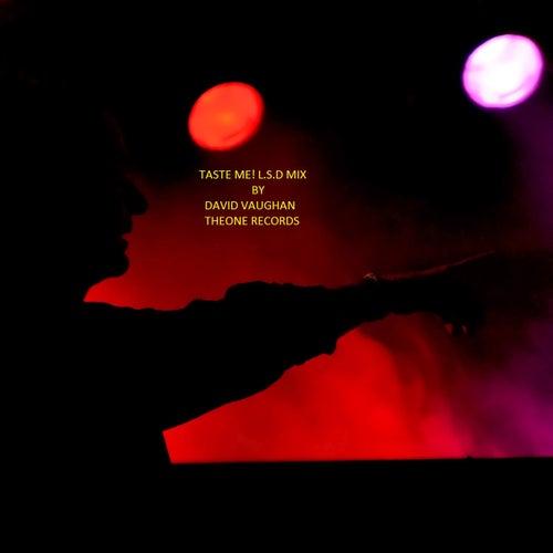 Taste Me (L.S.D Mix) by David Vaughan