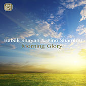 Morning Glory by Babak Shayan