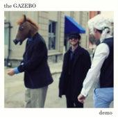 Demo by Gazebo