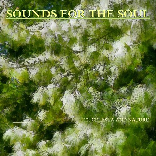 Sounds for the Soul 12: Celesta and Nature by Sounds for the Soul