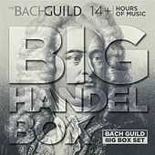 Play & Download Big Handel Box by Various Artists | Napster