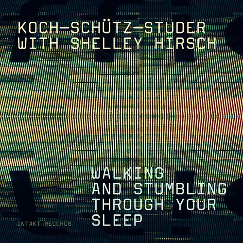 Walking and Stumbling Through Your Sleep by Koch Schütz Studer