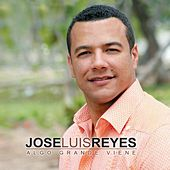 Play & Download Algo Grande Viene by Jose Luis Reyes | Napster