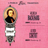 Play & Download The Great Polish Chopin Tradition: Wilhelm Backhaus, Alfred Cortot by Various Artists | Napster