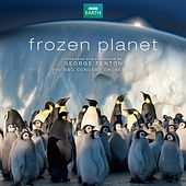 Play & Download Frozen Planet (Soundtrack from the TV series) by George Fenton | Napster