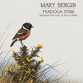 Feadoga Stain by Mary Bergin