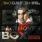 Play & Download Big Beethoven Box by Various Artists | Napster