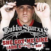 The Impolite Gentleman by Bubba Sparxxx