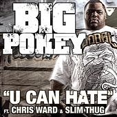 Play & Download U Can Hate (Feat. Chris Ward & Slim Thug) by Big Pokey | Napster