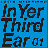 In Yer Third Ear 01 by Various Artists
