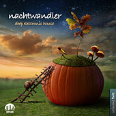 Nachtwandler, Vol. 2 - Deep Electronic House by Various Artists